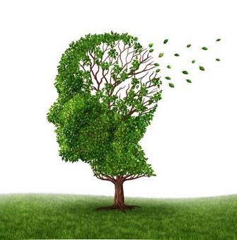 Roubaix Alzheimer