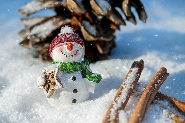Snow man 1882635 1920 li