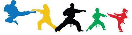 Taekwondo Fresnoy Makellerie